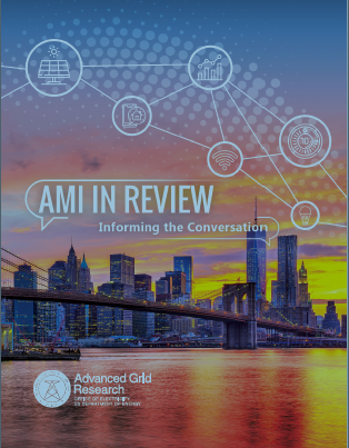 AMI in Review: Informing the Conversation